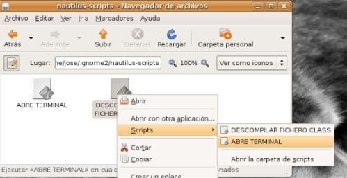 nautilus_script01.jpg