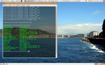terminal_transparente1.jpg