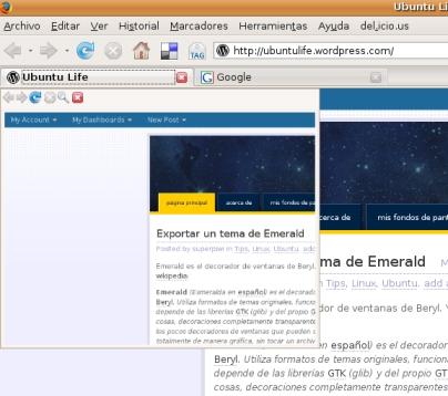 extensionfirefox01.jpg