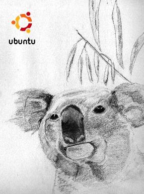 ubuntu910k