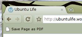 save_a_PDF