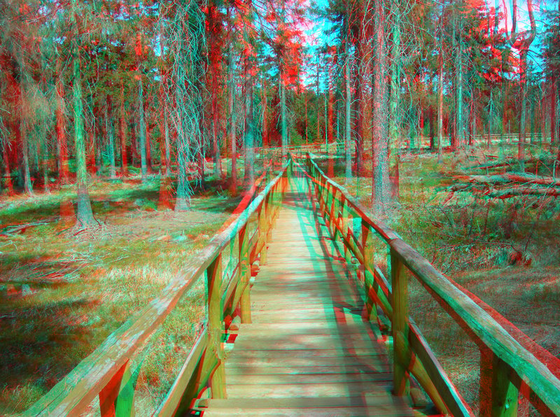 Quo vadis 3d anaglyph