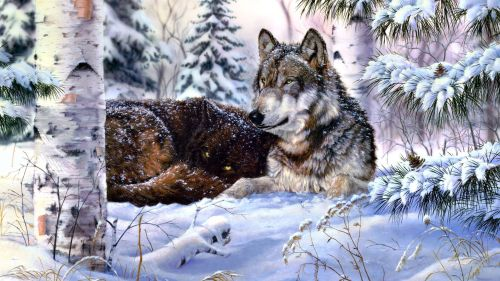 wolf-in-snow